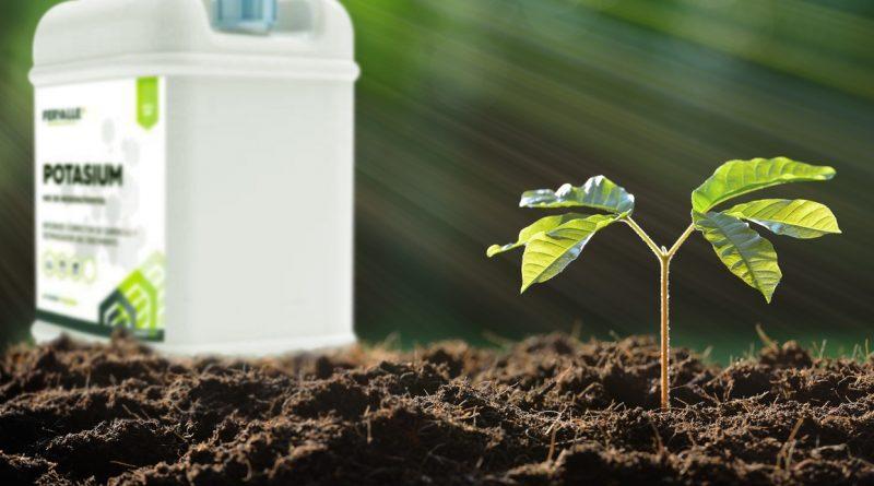 Diferencia entre peso/peso y peso/volumen o masa/masa y masa/volumen en productos fertilizantes y fitosanitarios.